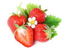 与绿色叶子和花的草莓浆果 库存图片
