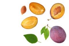 与绿色叶子和被削减的在白色背景隔绝的李子切片的新鲜的李子果子 顶视图 库存照片