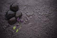 与绿色叶子和smallthe逗人喜爱的紫色花12月的黑石头 免版税库存图片