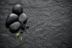 与绿色叶子和smallthe逗人喜爱的紫色花12月的黑石头 免版税图库摄影