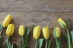 与绿色叶子特写镜头的黄色郁金香在木棕色背景 宏指令 免版税图库摄影