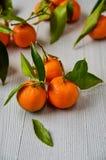 与绿色叶子的三个新鲜的蜜桔 水多的橘子和在灰色木板切的蜜桔桔子 柑橘 免版税库存图片