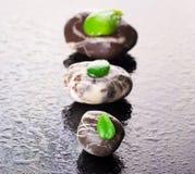 与绿色叶子的小卵石在黑色玻璃 免版税库存照片