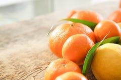 与绿色叶子的开胃新鲜的柑橘水果 图库摄影