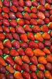与绿色叶子的新鲜的红色草莓果子 免版税库存图片