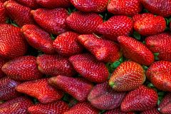 与绿色叶子的新鲜的红色草莓果子 免版税库存照片