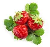 与绿色叶子的新鲜的红色草莓 免版税库存图片