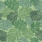 与绿色叶子的无缝的模式背景 免版税库存照片