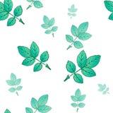 与绿色叶子的无缝的装饰模板纹理 皇族释放例证