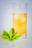 与绿色叶子的清凉茶 免版税库存照片