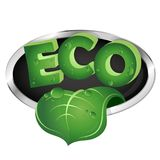 与绿色叶子的生态标志 库存照片