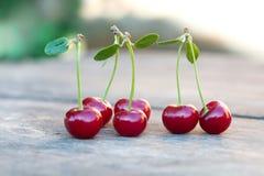 与绿色叶子的红色樱桃莓果 成熟果子宏观视图照片 选择聚焦,浅景深 美丽 免版税图库摄影