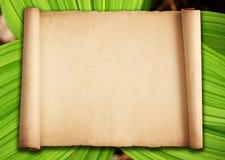 与绿色叶子的老纸背景 库存照片