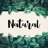与绿色叶子的自然词 友好, eco环境,概念 图库摄影