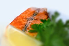 与绿色和柠檬的烤三文鱼鱼排,隔绝在白色背景 菜单照片 免版税图库摄影