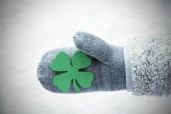 与绿色四叶子三叶草,雪背景的羊毛手套 库存照片