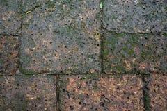 与绿色地衣的潮湿生锈的红砖石头红土带路面块样式背景 免版税库存图片