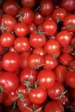 与绿色尾巴的新鲜蔬菜红色蕃茄关闭在箱子,箱子背景在健康的市场上 皇族释放例证