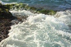 与绿色岩石岸和泡沫nea的美好的海波浪背景 免版税库存图片