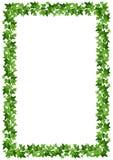 与绿色常春藤叶子的背景框架 也corel凹道例证向量 免版税库存照片
