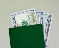 与绿色护照-接近的钞票 库存照片