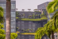 与绿色树的现代玻璃办公楼 库存图片