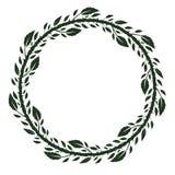 与绿色玫瑰色叶子、分支和刺的框架 库存例证