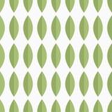 与绿色瓣的无缝的传染媒介样式 库存图片
