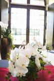 与绿色的新鲜的自然白色兰花花在花瓶离开 免版税库存图片
