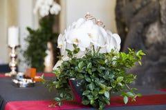 与绿色的新鲜的自然白色兰花花在花瓶离开 免版税图库摄影