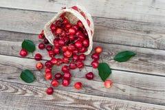 与绿色的樱桃莓果在轻的木背景离开 免版税库存照片