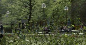 与绿色的灌木在放松的前景和的人民在背景中离开在长凳 股票视频