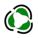 与绿色的简单的eco商标 皇族释放例证