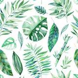 与绿色的纹理,分支,叶子,热带叶子,叶子,竹子 向量例证