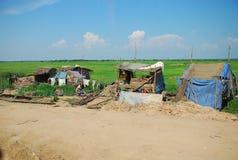 与绿色稻田的贫穷小屋 免版税库存照片