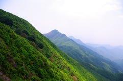 与绿色结构树的高山在西南瓷 库存照片