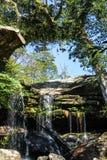 与绿色结构树的水秋天 免版税库存图片