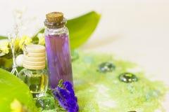 与绿色腌制槽用食盐的温泉概念 免版税图库摄影