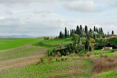 与绿色草甸和领域的托斯坎风景 免版税库存照片