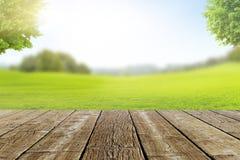 与绿色草甸的风景大阳台Bokeh 库存照片