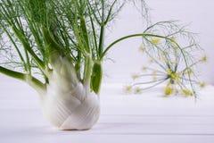 与绿色词根的未加工的茴香电灯泡和叶子、准备好的黑种草和的根烹调 免版税库存图片