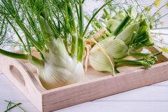 与绿色词根的未加工的茴香电灯泡和叶子、准备好的黑种草和的根烹调 免版税库存照片