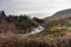 与绿色青苔的冰岛往山克洛的风景和看法 免版税库存照片