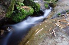 与绿色青苔石头的瀑布在雨林, Kiriwong Vil里 库存图片