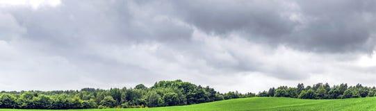 与绿色领域的农村全景风景 免版税库存图片