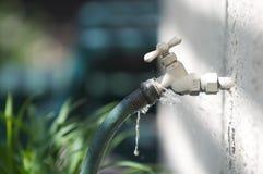 与绿色水管春天的水子口泄漏 免版税库存图片