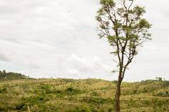 与绿色montain的美好的风景 免版税库存照片