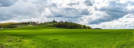 与绿草、小山和树,多云天空的令人惊异的全景风景 免版税库存图片