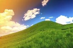 与绿草和蓝天的小山与白色松的云彩 免版税图库摄影