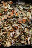 与绿豆的圆白菜 免版税库存图片